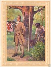 The Burning Question About Nathan Hale